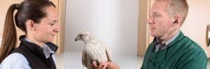 Eden Veterinary Practice-Nurses